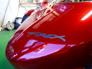 Trex2